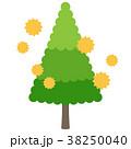 花粉 アレルゲン スギ花粉のイラスト 38250040