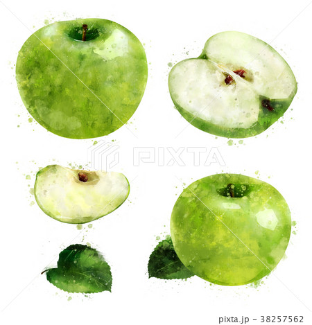 Green Apple on white background. Watercolor 38257562
