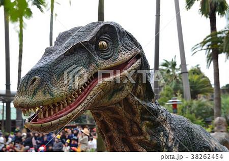 恐竜の顔 38262454