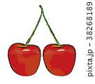 双子のサクランボのイラスト |さくらんぼの実 |水彩風 手描き風イラスト 墨絵 38268189