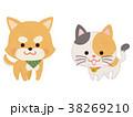お利口なペットの犬と猫 38269210