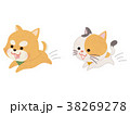 ペット 犬 猫のイラスト 38269278