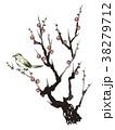 梅の花とウグイス 38279712
