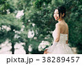 ウエディング ウエディングドレス ブライダルの写真 38289457