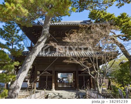 高輪泉岳寺 38295239