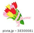 チューリップ 花 植物のイラスト 38300081