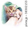 色鉛筆で描いた鳴く子猫 38302153