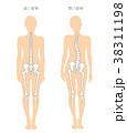 骨 悪い姿勢 体の歪みのイラスト 38311198