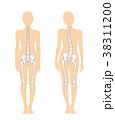 骨 悪い姿勢 体の歪みのイラスト 38311200