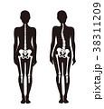 骨 悪い姿勢 体の歪みのイラスト 38311209
