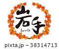 紅葉 秋 筆文字のイラスト 38314713