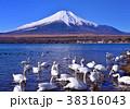 山中湖畔からの冬の風景-777175 38316043