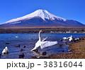 山中湖と富士山-777177 38316044
