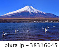 山中湖と富士山-777179 38316045