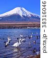 山中湖畔からの冬の風景-777180 38316046