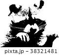 A sweet little racoon - Illustration 38321481