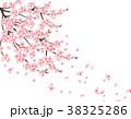小枝 サクランボ チェリーのイラスト 38325286