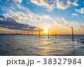 江川海岸 海 夕景の写真 38327984