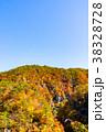 【宮城県】鳴子峡の紅葉 38328728