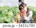 イチゴ狩り 子供 女の子の写真 38331785