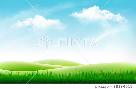 nature summer background with green grassのイラスト素材 38334619