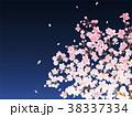 桜 夜桜 春のイラスト 38337334