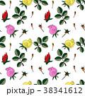 バラ 黄色い 黄のイラスト 38341612