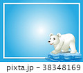 テンプレート フレーム くまのイラスト 38348169