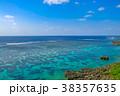 海 珊瑚礁 宮古島の写真 38357635