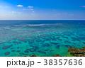 海 珊瑚礁 宮古島の写真 38357636