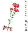 カーネーション 母の日 赤のイラスト 38376523