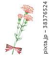 カーネーション 母の日 赤のイラスト 38376524
