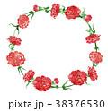 カーネーション 花 フレームのイラスト 38376530