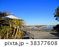 江の島サムエル・コッキング苑 江の島 青空の写真 38377608