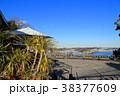 江の島サムエル・コッキング苑 江の島 青空の写真 38377609
