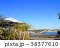 江の島サムエル・コッキング苑 江の島 青空の写真 38377610