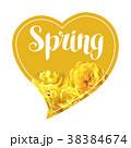 フラワー 花 チューリップのイラスト 38384674
