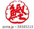 鰹 筆文字 文字のイラスト 38385213