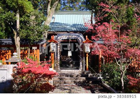京都 秋の赤山禅院 本殿前の正念誦 38388915