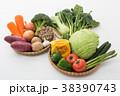 野菜集合 38390743