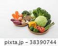 野菜集合 38390744