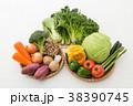 野菜集合 38390745