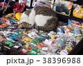 台湾 猴硐 ホウトン (猫村) 38396988