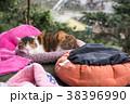 台湾 猴硐 ホウトン (猫村) 38396990
