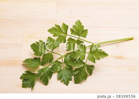 木のテーブルの上のイタリアンパセリの葉 38399556