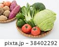野菜 38402292