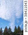 青空 雲 木の写真 38411043