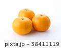 蜜柑 柑橘類 果物の写真 38411119