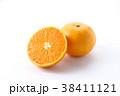 蜜柑 柑橘類 果物の写真 38411121