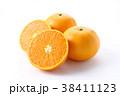 蜜柑 柑橘類 果物の写真 38411123